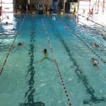 Die Schwimmer des Sponsorenschwimmens